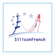 partner-silicon-french-112x112